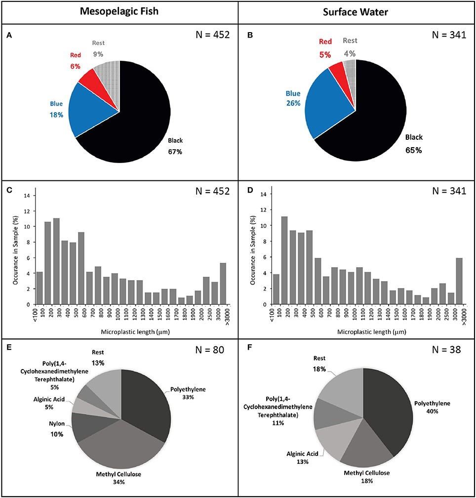 An analysis of the color, length and type of microplastics found in deep sea fish. (Source: Frontiers in Marine Science journal, Frequency of Microplastics in Mesopelagic Fishes from the Northwest Atlantic.)