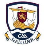 Galway's Hurling problem goes further than just managerial appointments